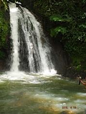 plus de 14 sortes d'écrevisses dans cette rivière à  l'eau fraiche